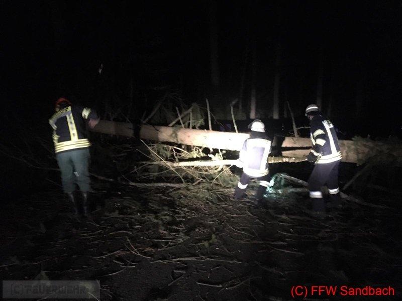 Technische Hilfeleistung vom 09.03.2019  |  (C) Feuerwehr Sandbach / Bachhuber (2019)