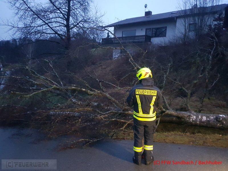 Technische Hilfeleistung vom 28.01.2020     (C) Feuerwehr Sandbach / Bachhuber (2020)